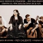 Albi Soirée Gaillac Primeur avec ALMA GIPSY (c) LE PRE EN BULLE