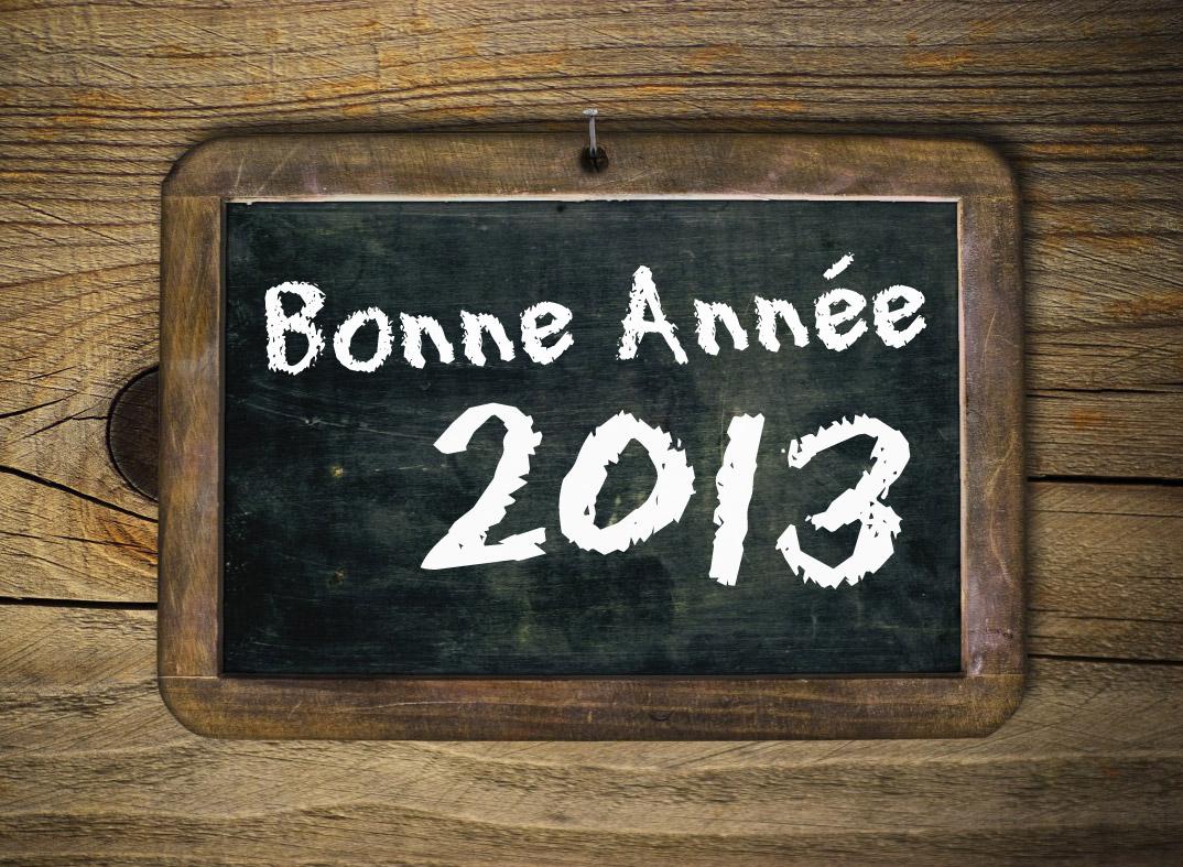 Bonne Année 2013 - Dans Ton Tarn / © Olivier Le Moal - Fotolia et François Darnez – Les petits lézards