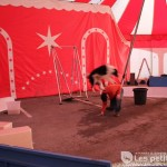 Cirque Alegria - Lisle sur Tarn / © François Darnez – Les petits lézards