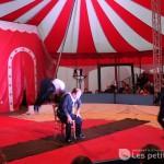 Première du Cirque Alegria - Lisle sur Tarn / © François Darnez – Les petits lézards