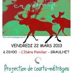 Graulhet Projection de Courts-Métrages (c) Les Videophages