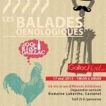 Castanet balade oenologique 2eme édition (c) gaillac visit