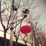 Lanterne devant le portail du studio de Caochangdi / © Ai Weiwei