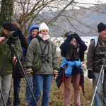 Lisle-sur-Tarn Sortie Ornithologique (c) Association Apifera Tarn