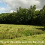 La zone humide du Testet / © Collectif pour la sauvegarde de la zone humide du Testet