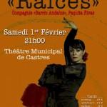 Raices - spectacle de flamenco (c) Casa de España de Castres