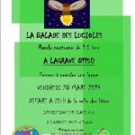Lagrave rando nocturne 5ème édition (c) Rives du Tarn Running