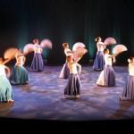 Albi soirée soldaire : Un Olé pour Eux! (c) association Flamenco pour tous