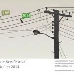 Larroque Arts Festsival 2014 (c) La Vieille Poste et 'delapeinture'