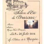 Salon d'été de Brassac 2014 (c) Les arts Brassagais et de Val d'Agout
