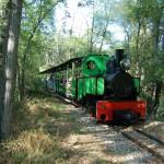 Chemin de Fer Touristique du Tarn (c) Association ACOVA