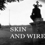 Skin and Wire (c) Skin and Wire