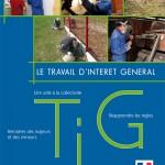 TIG, Travail d'intérêt Général
