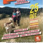 Grande Cani-marche (c) Association 2M4L