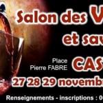 Salon des vins et des saveurs 2015 (c)