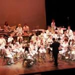 Concert Concretum FMT (c) Féderation Musicale du Tarn