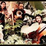 concert musiques du monde - ethnic new jazz (c) Association ALGORITHME