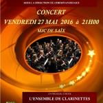 Concert, l'harmonie philarmonique de Castres (c) mjc de Saïx