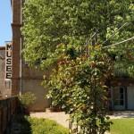 Multiplier ses plantes (c) Association Amis du jardin Gaillac/Graulhet
