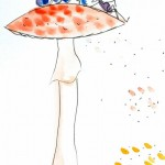 Conférence : Le grand voyage des champignons (c) Ville de Gaillac