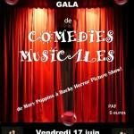 Gala de Comédies Musicales (c) Association Comédies Pyrénées
