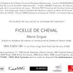 Vernissage exposition de Marie Sirgue (c) AFIAC