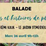Balade : plantes et histoires de plantes (c) Association Le Jardin d'Emerveille