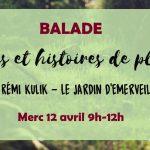 Balade : Plantes et histoires de plantes (c) Association Le Jardin d'émerveille