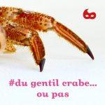 #du gentil crabe, Les Zyvettes / © Nathalie Le Meur