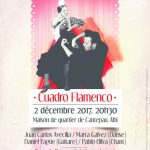 Cuadro flamenco (c) association flamenco pour tous