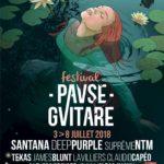 Festival Pause Guitare 2018, l'affiche / © Christophe Sénégas