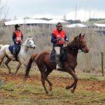 Course D'endurance Equestre Regionale à Cap D (c) Olivier Franc