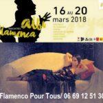 Rencontres albi flamenca (c) Rencontres albi Flamenca
