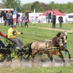 13ème Concours National d'Attelage (c) SMAD - La Découverte, LE GARRIC (81450)