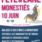 15ème Fête de l'Âne (c) association Lez'Arts d'Ânes