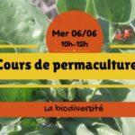 Cours de permaculture : la biodiversité (c) Association Le Jardin d'émerveille