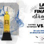 Finale du Top14 en direct Chai Les Jumeaux (c) Chai Les Jumeaux