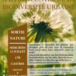 A la rencontre de la biodiversite urbaine (c) CPIE des Pays Tarnais