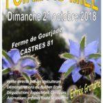 23ème Foire au Miel des Pays Tarnais (c)