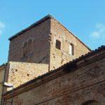La tour Palmata (c)