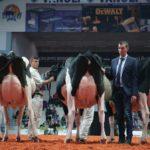 Planète lait ciné débat (c) INU Champollion - Le Retour du Jeudi