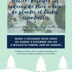 Fabrication cadeaux de Noël à base de plantes (c) Association Terre Nature