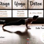 Stage Yoga Detox - Débutants (c) Marion Le fournier - L'alchimie des Corps
