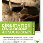 Dégustation oenologique (c) Office de tourisme intercommunal Tarn-Agout