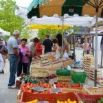 Petit marché des producteurs (c) mairie de Gaillac