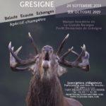 Balade sonore au coeur de la forêt de la Grés (c) Fédération départementale des chasseurs du Ta
