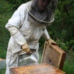 5° Journée des Compagnons du Miel (c) Les Compagnons du Miel