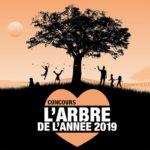 Terre Sauvage, concours l'arbre de l'année 2019 / © DR