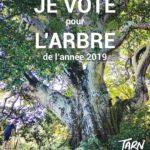 Je vote pour l'arbre de l'année 2019 / © Département du Tarn